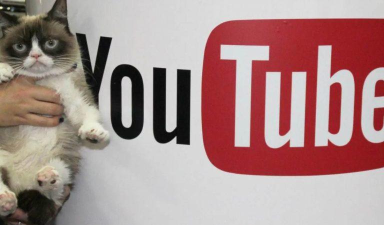 Как получать конверсии с видеорекламы в YouTube: инструкция + кейс